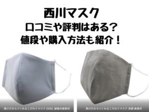 西川マスクの口コミや評判は?値段や購入方法についても紹介
