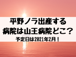 平野ノラ出産する病院は山王病院どこ?予定日は2021年2月!