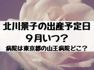 北川景子の出産予定日9月いつ?病院は東京都の山王病院ってどこ?