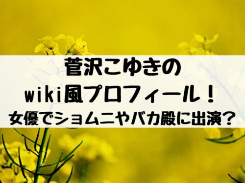菅沢こゆきのwiki風プロフィール!女優でショムニやバカ殿に出演って本当?