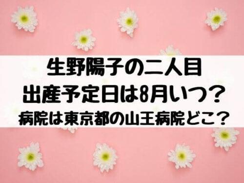 生野陽子の二人目出産予定日は8月いつ?病院は東京都の山王病院どこ?